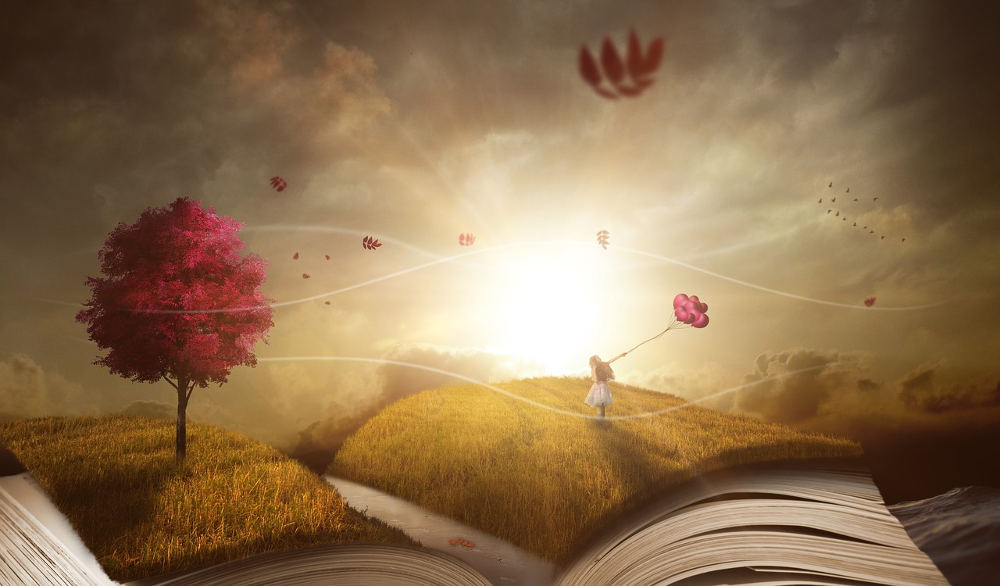 Selbstfindung ist der Lebensplan. Finde ihn in der Bibliothek deines Lebens.